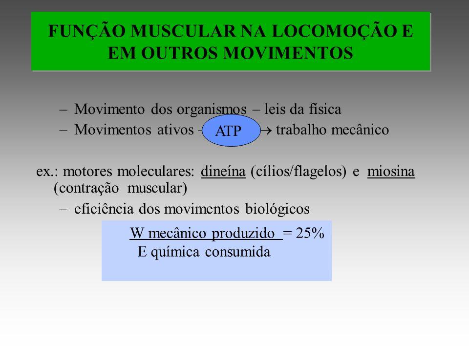 FUNÇÃO MUSCULAR NA LOCOMOÇÃO E EM OUTROS MOVIMENTOS