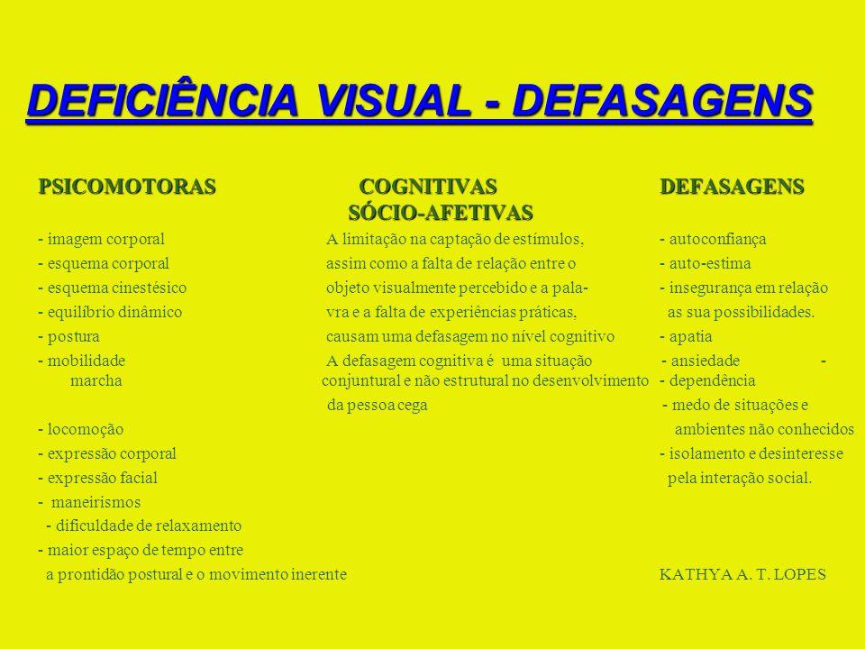 DEFICIÊNCIA VISUAL - DEFASAGENS