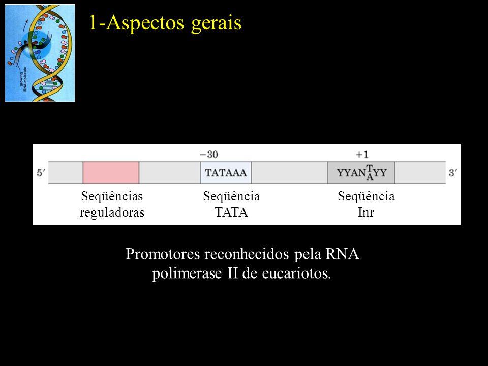 1-Aspectos gerais Seqüências reguladoras. Seqüência TATA.