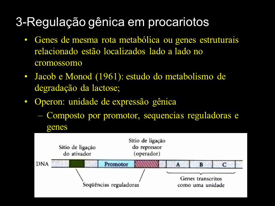 3-Regulação gênica em procariotos