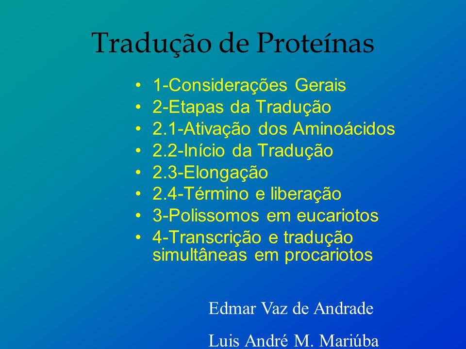 Tradução de Proteínas 1-Considerações Gerais 2-Etapas da Tradução
