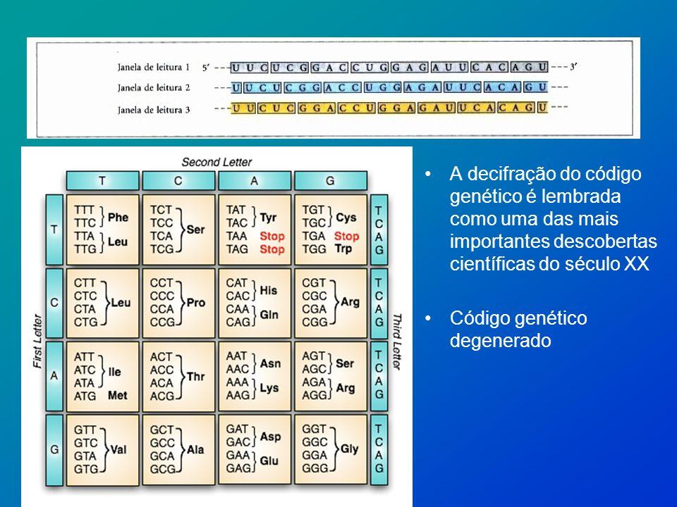 A decifração do código genético é lembrada como uma das mais importantes descobertas científicas do século XX