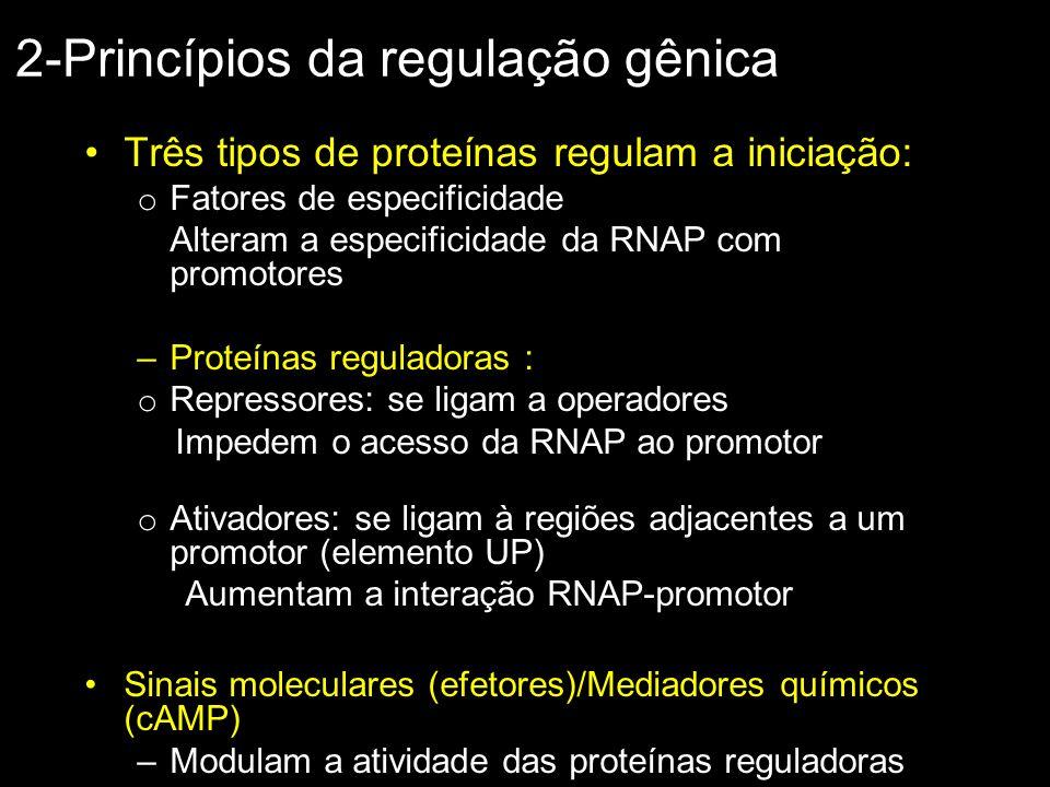2-Princípios da regulação gênica