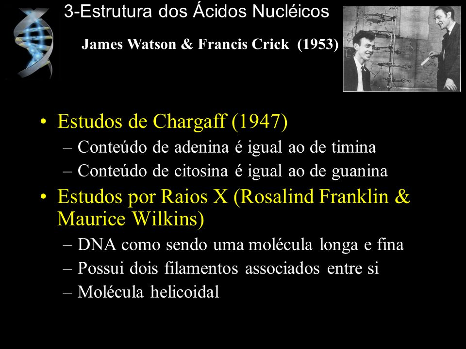 James Watson & Francis Crick (1953)