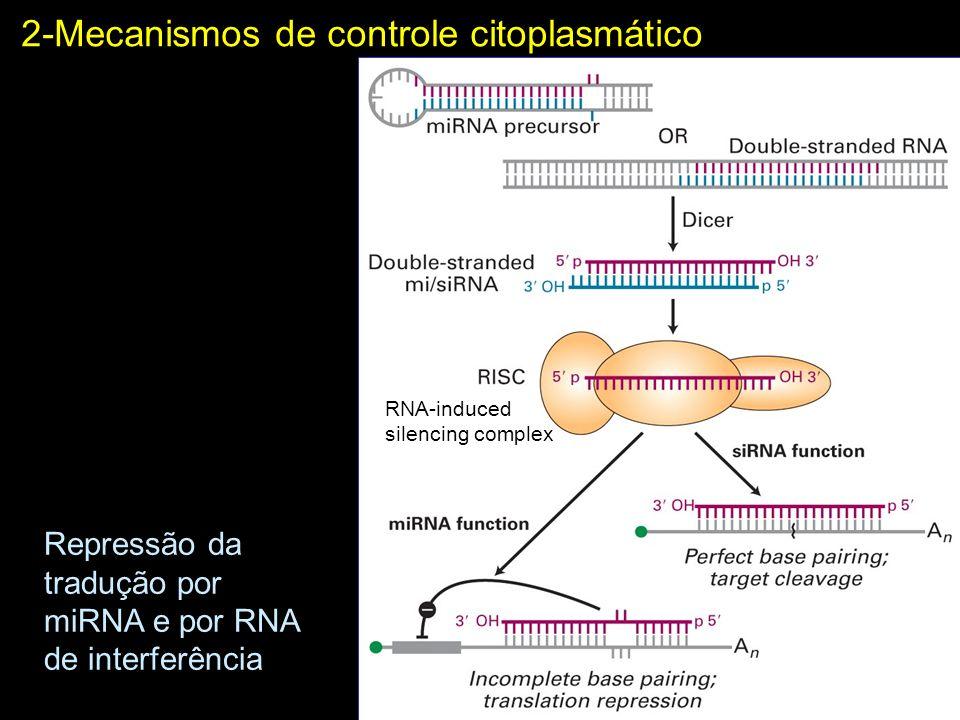 2-Mecanismos de controle citoplasmático