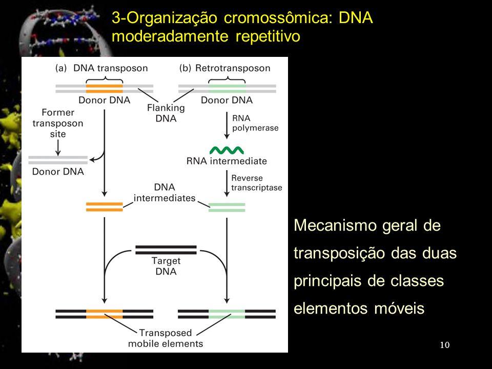 3-Organização cromossômica: DNA moderadamente repetitivo