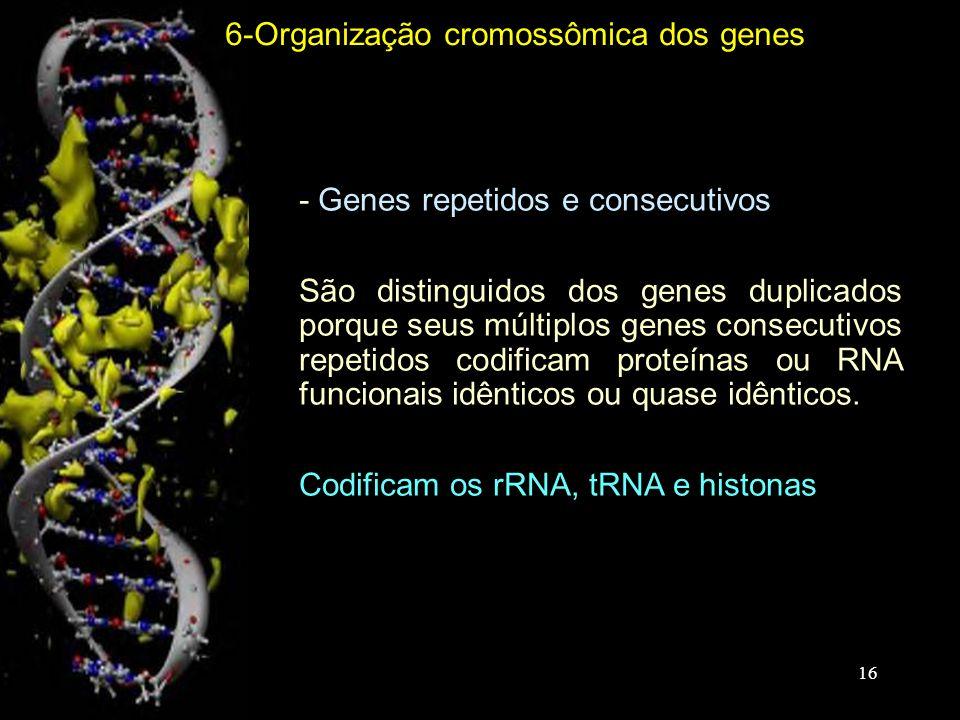 6-Organização cromossômica dos genes