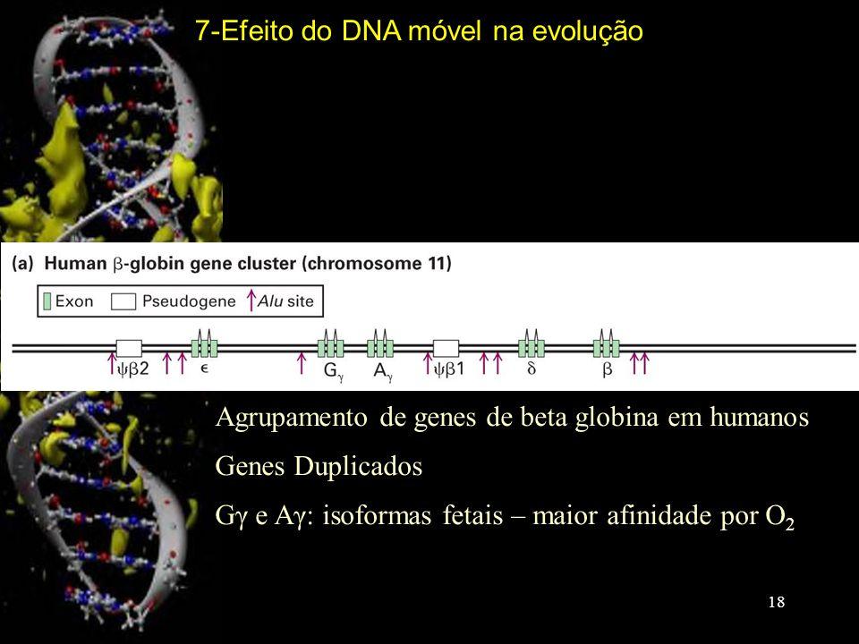 7-Efeito do DNA móvel na evolução