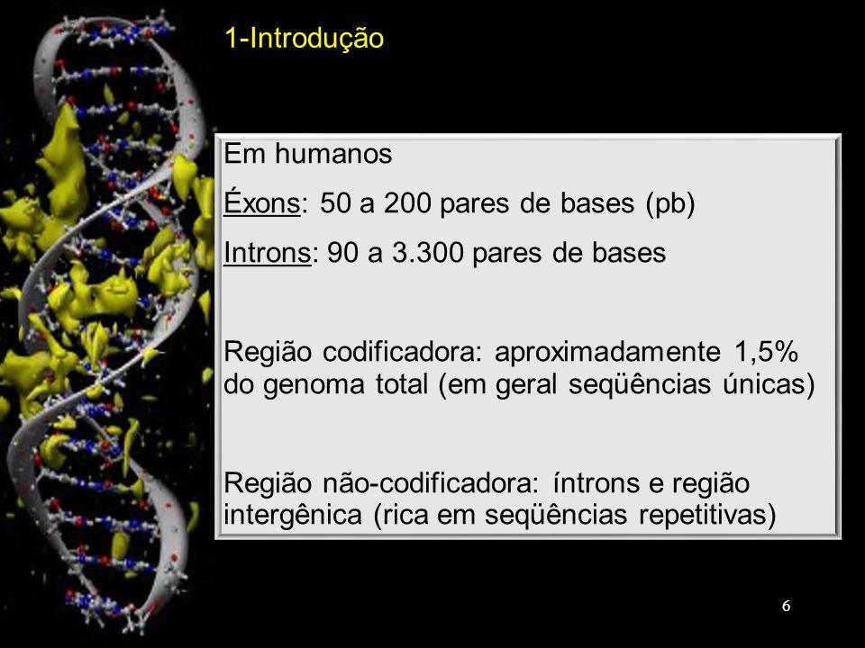 1-Introdução Em humanos. Éxons: 50 a 200 pares de bases (pb) Introns: 90 a 3.300 pares de bases.