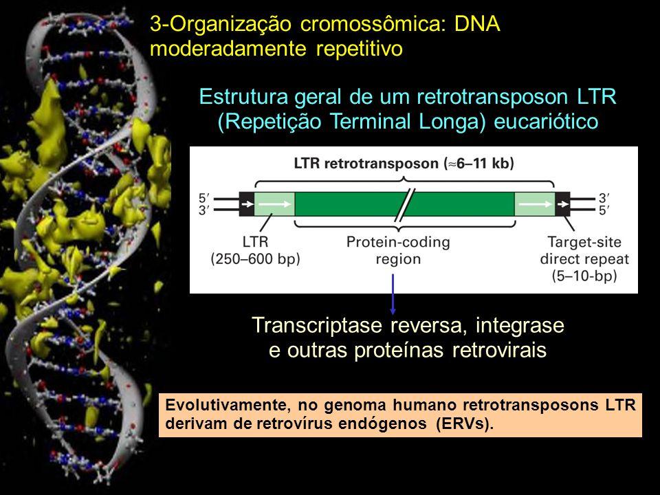 Transcriptase reversa, integrase e outras proteínas retrovirais