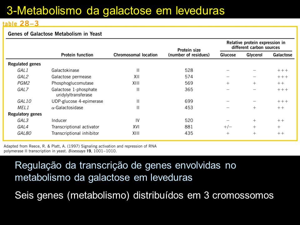 3-Metabolismo da galactose em leveduras