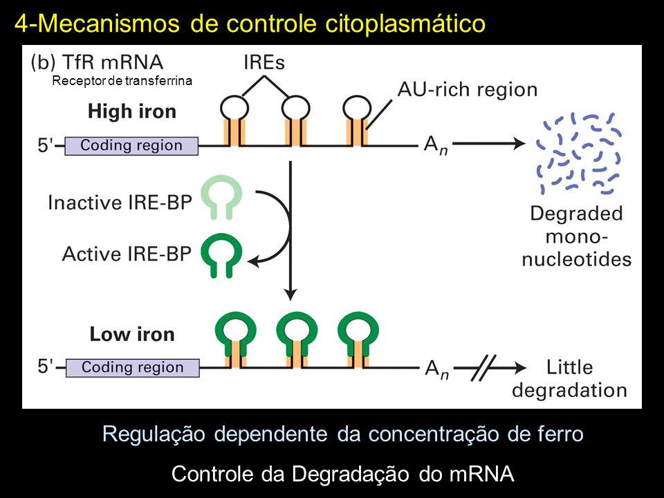 4-Mecanismos de controle citoplasmático
