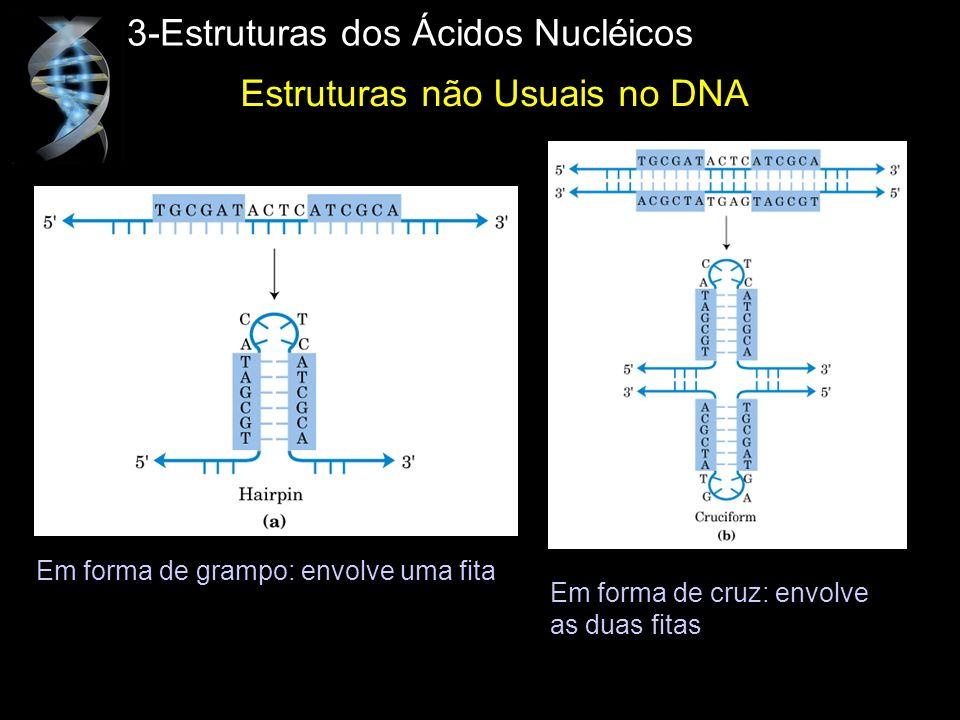 3-Estruturas dos Ácidos Nucléicos