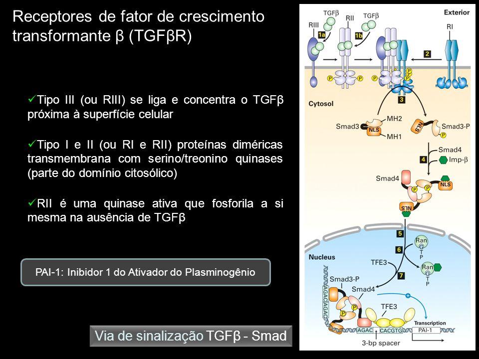 PAI-1: Inibidor 1 do Ativador do Plasminogênio