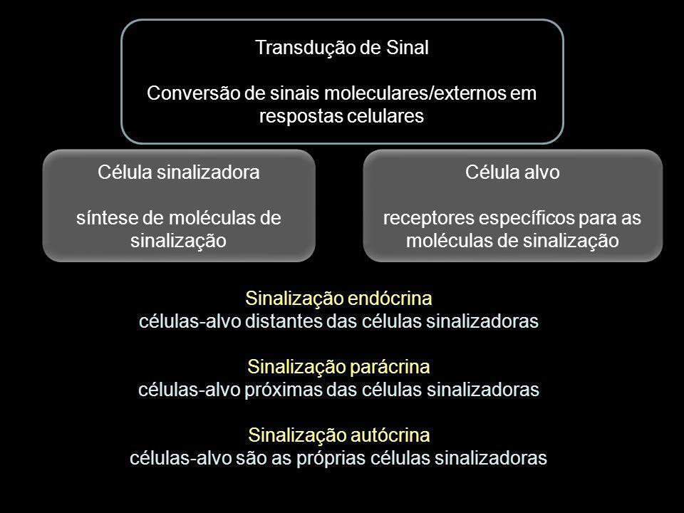 Conversão de sinais moleculares/externos em respostas celulares