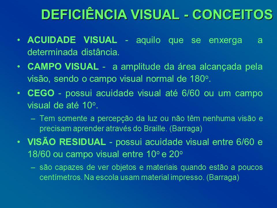 DEFICIÊNCIA VISUAL - CONCEITOS