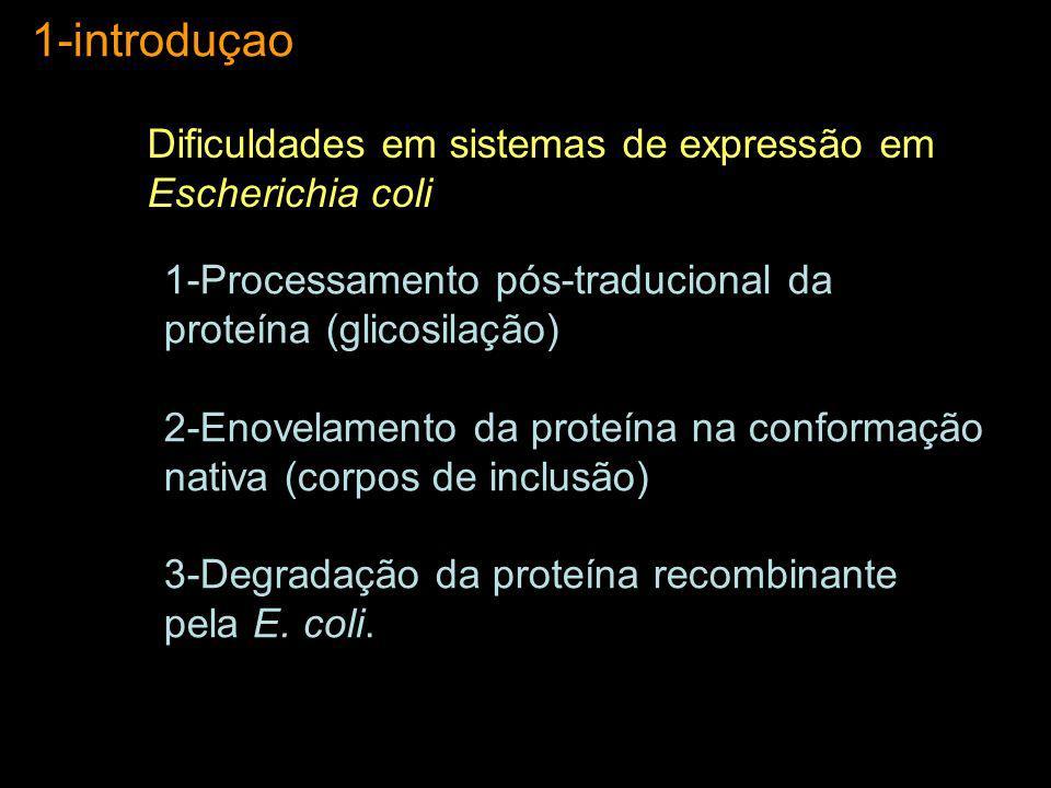 1-introduçao Dificuldades em sistemas de expressão em Escherichia coli