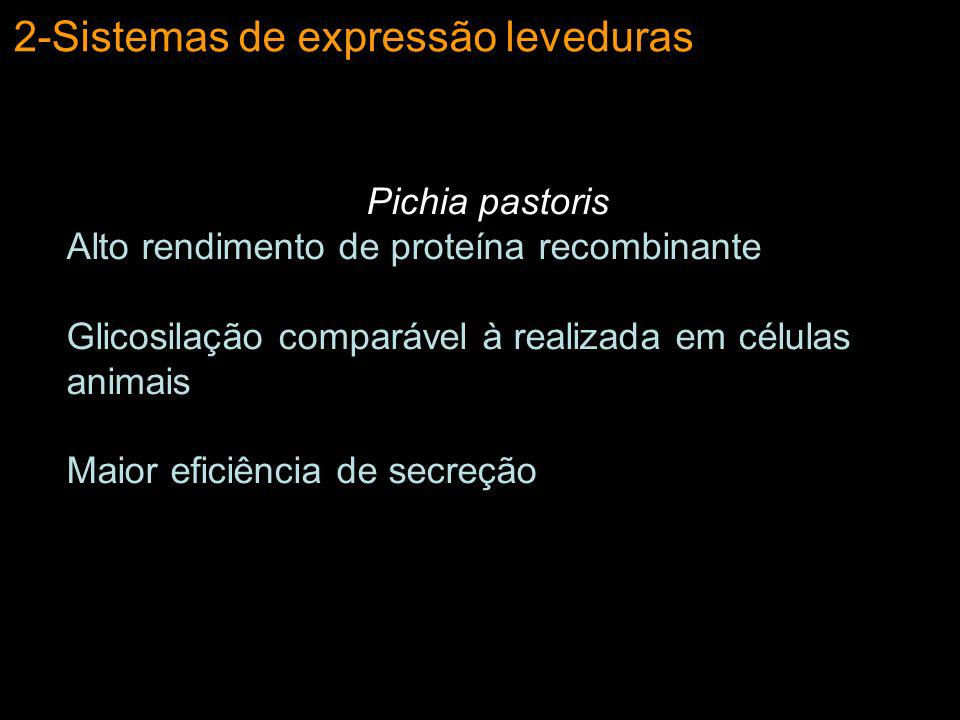 2-Sistemas de expressão leveduras