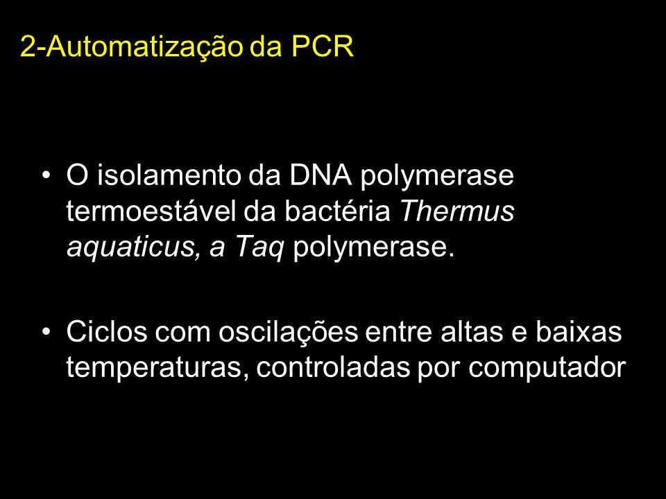 2-Automatização da PCR O isolamento da DNA polymerase termoestável da bactéria Thermus aquaticus, a Taq polymerase.