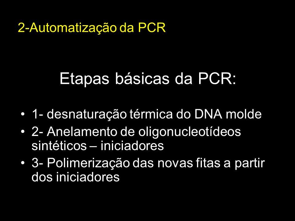 Etapas básicas da PCR: 2-Automatização da PCR