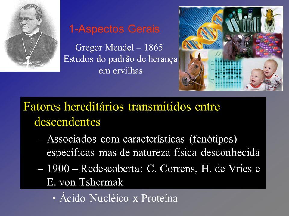 Gregor Mendel – 1865 Estudos do padrão de herança em ervilhas