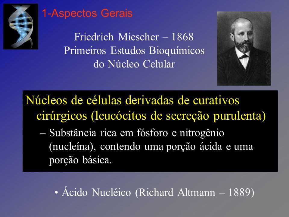 1-Aspectos Gerais Friedrich Miescher – 1868 Primeiros Estudos Bioquímicos do Núcleo Celular.
