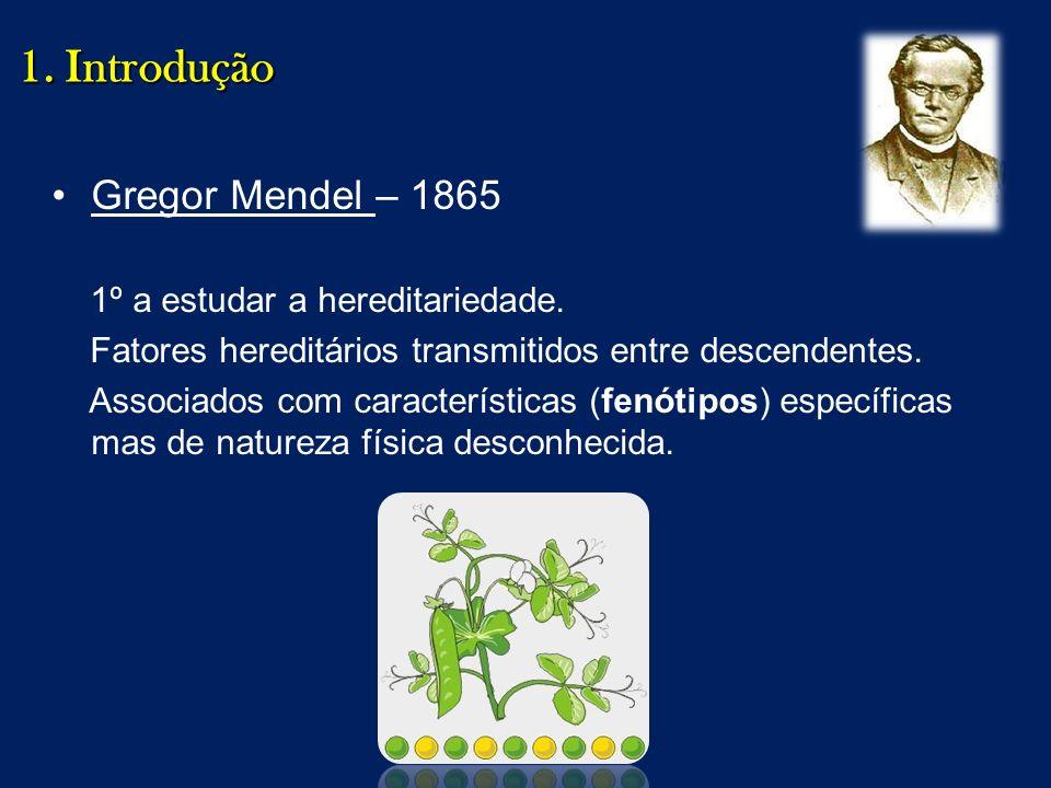 1. Introdução Gregor Mendel – 1865 1º a estudar a hereditariedade.