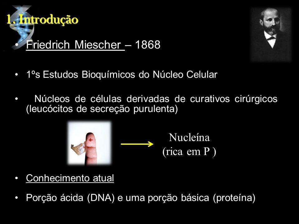 1. Introdução Friedrich Miescher – 1868 Nucleína (rica em P )