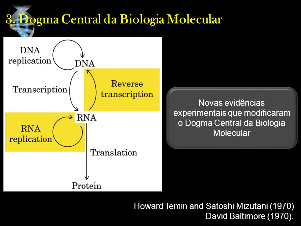 3. Dogma Central da Biologia Molecular