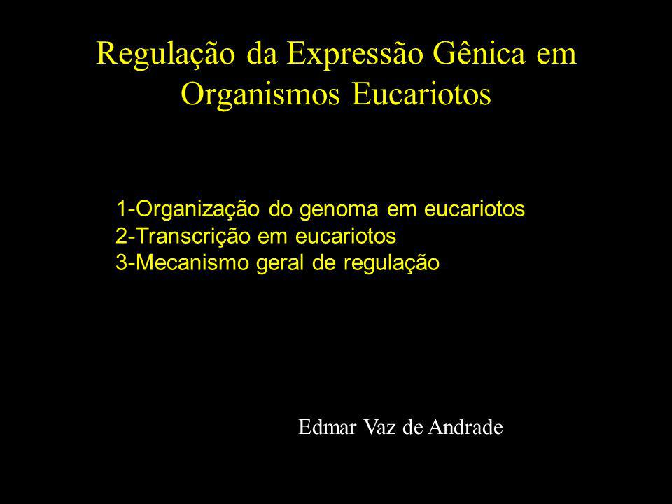 Regulação da Expressão Gênica em Organismos Eucariotos