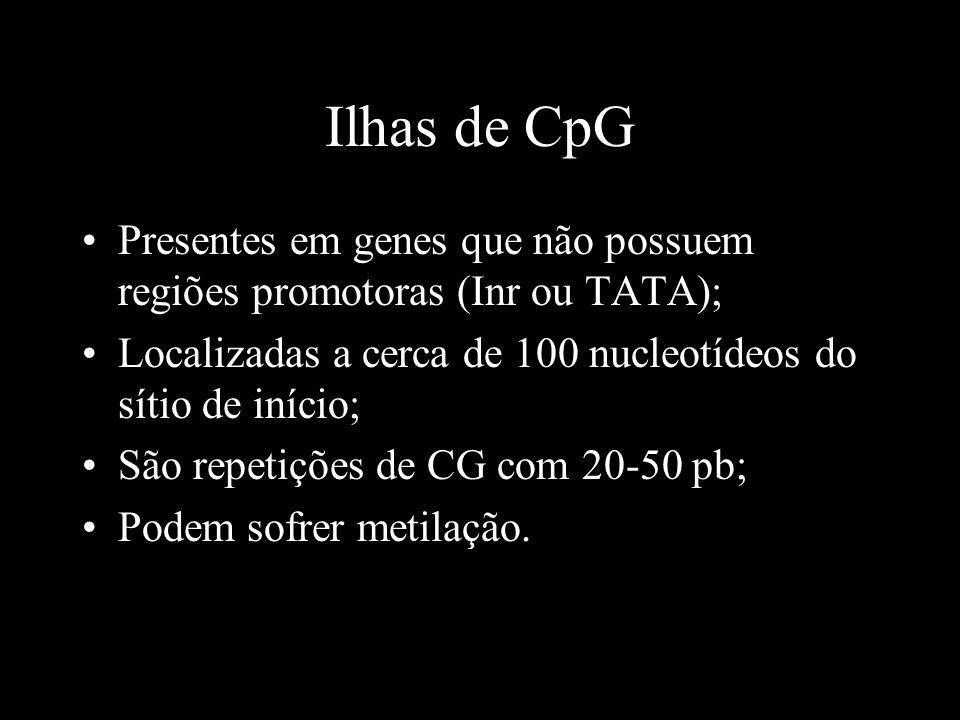 Ilhas de CpG Presentes em genes que não possuem regiões promotoras (Inr ou TATA); Localizadas a cerca de 100 nucleotídeos do sítio de início;