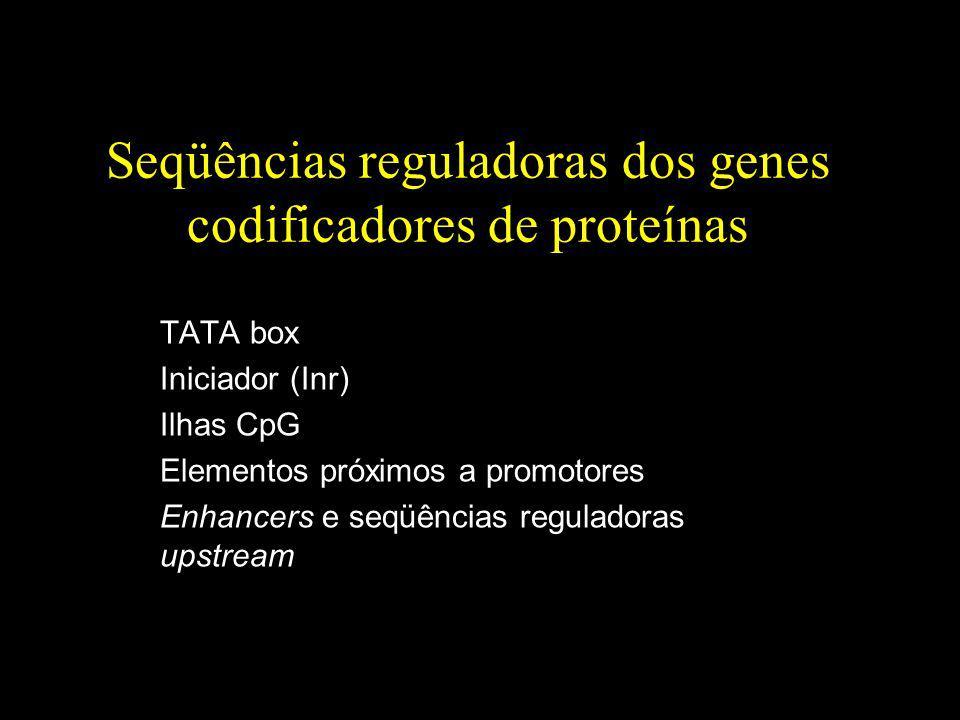Seqüências reguladoras dos genes codificadores de proteínas