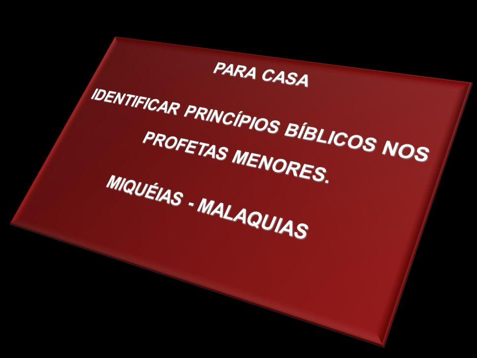 IDENTIFICAR PRINCÍPIOS BÍBLICOS NOS PROFETAS MENORES.