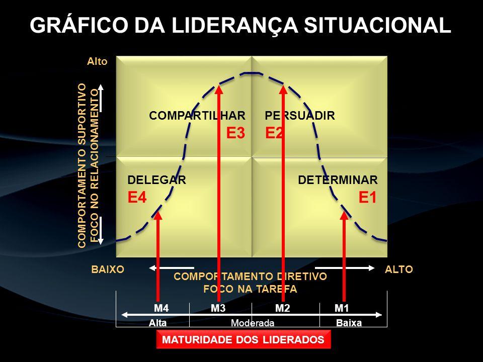 GRÁFICO DA LIDERANÇA SITUACIONAL
