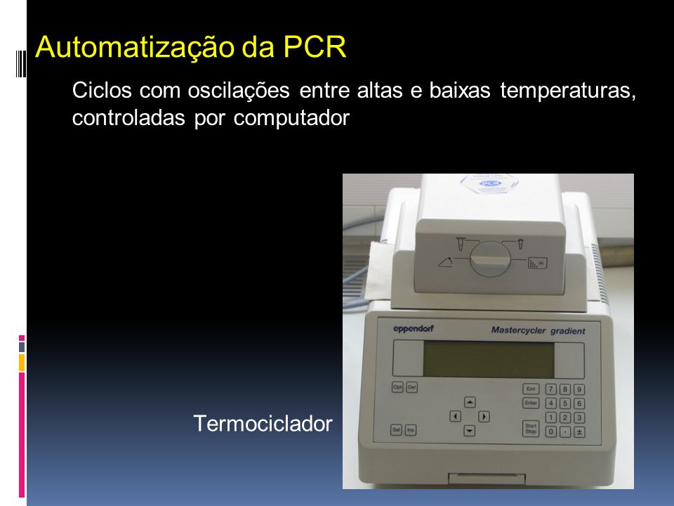 Automatização da PCR Ciclos com oscilações entre altas e baixas temperaturas, controladas por computador.