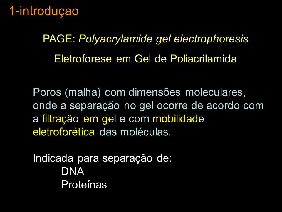 1-introduçao PAGE: Polyacrylamide gel electrophoresis