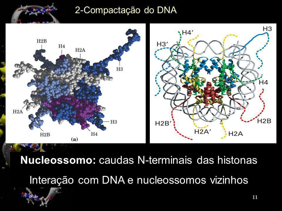 Nucleossomo: caudas N-terminais das histonas