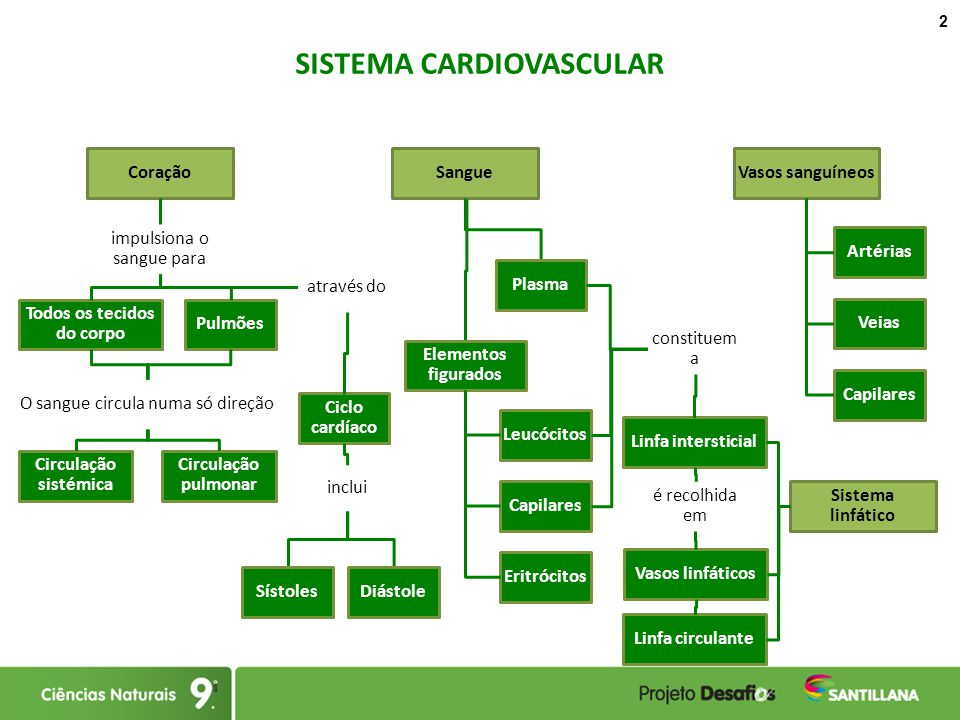 Filediagrama General De Causa Efecto Svg Wikimedia Commons