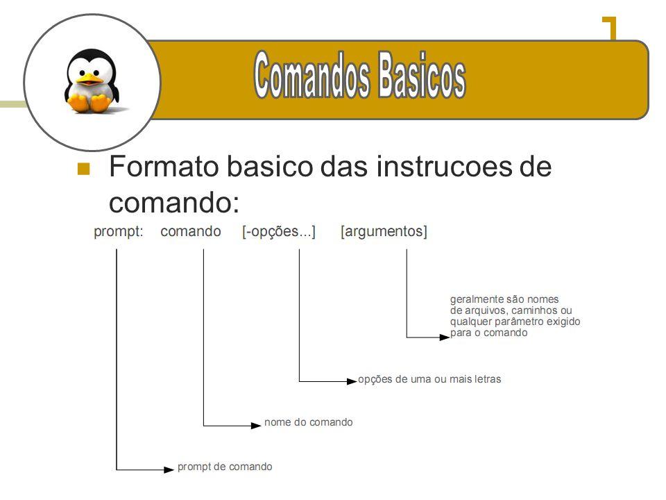 e Comandos Basicos Formato basico das instrucoes de comando: