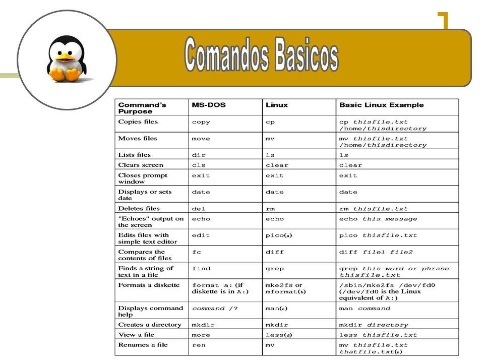 e Comandos Basicos