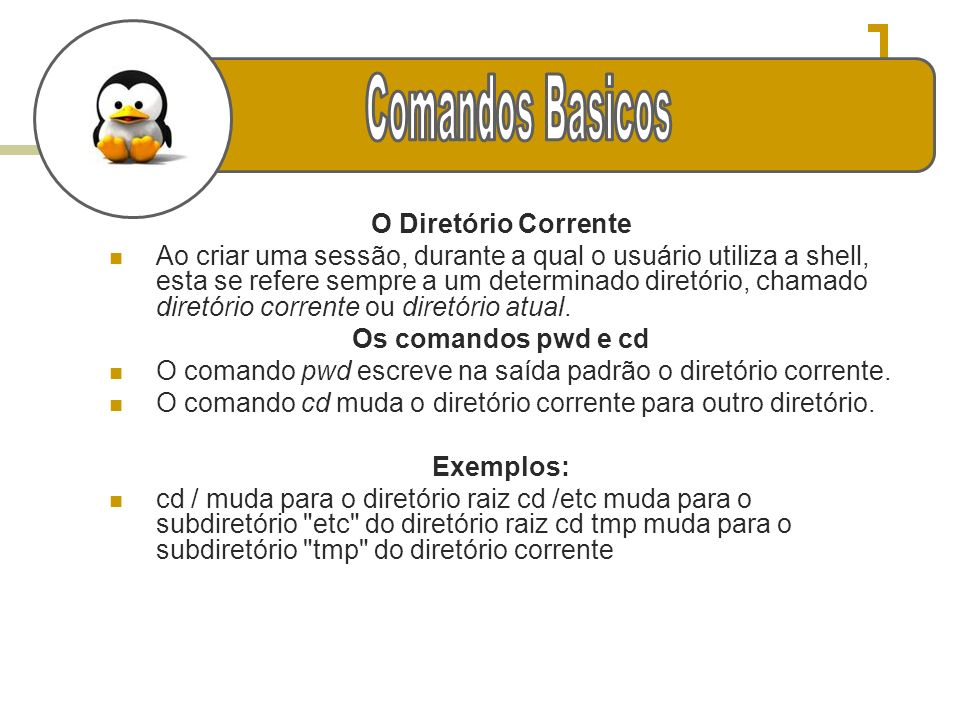 g Comandos Basicos O Diretório Corrente