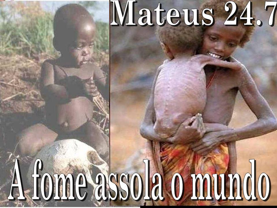 Mateus 24.7 A fome assola o mundo
