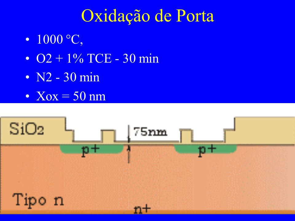 Oxidação de Porta 1000 C, O2 + 1% TCE - 30 min N2 - 30 min
