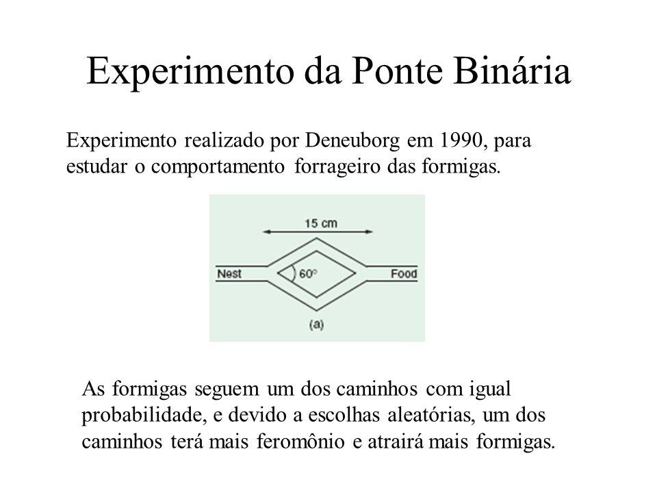 Experimento da Ponte Binária
