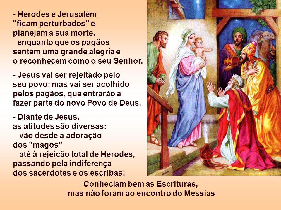 Conheciam bem as Escrituras, mas não foram ao encontro do Messias