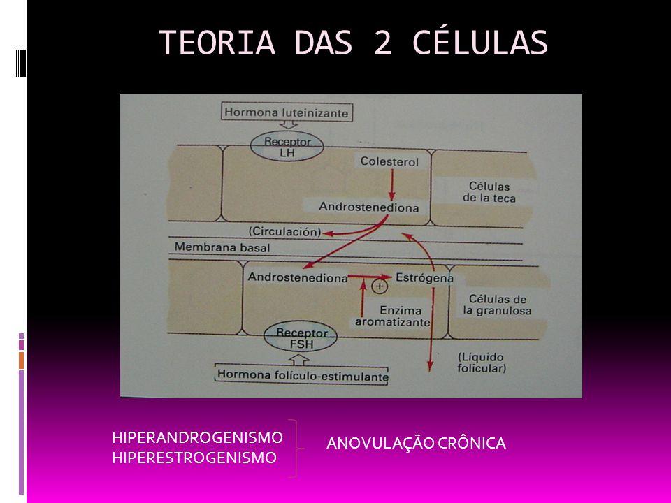 TEORIA DAS 2 CÉLULAS HIPERANDROGENISMO ANOVULAÇÃO CRÔNICA