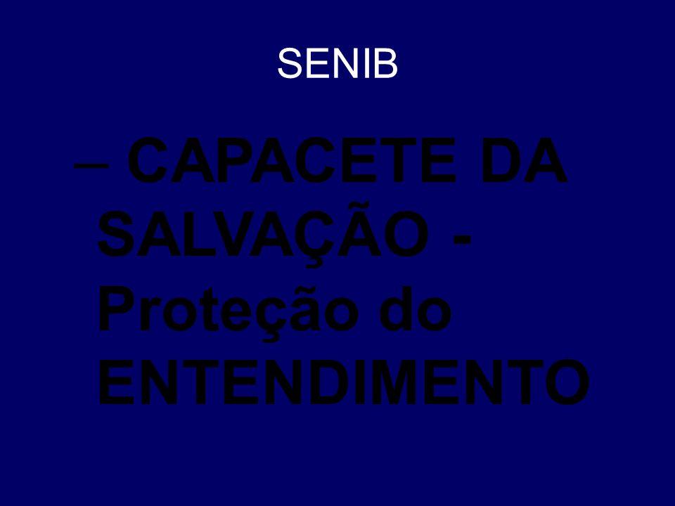 CAPACETE DA SALVAÇÃO - Proteção do ENTENDIMENTO