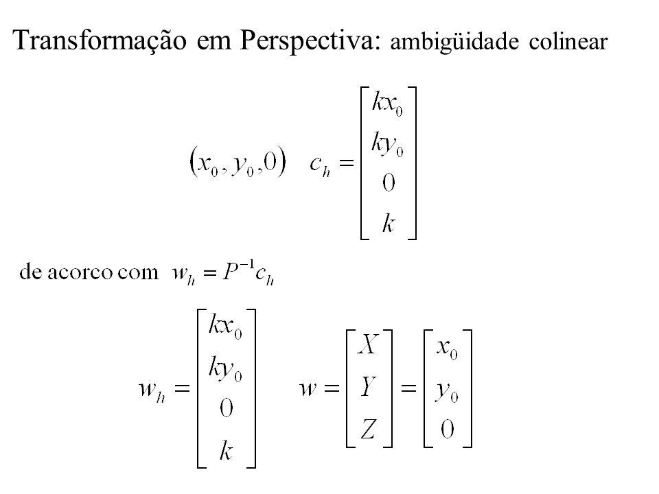 Transformação em Perspectiva: ambigüidade colinear