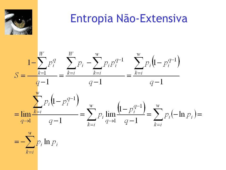 Entropia Não-Extensiva