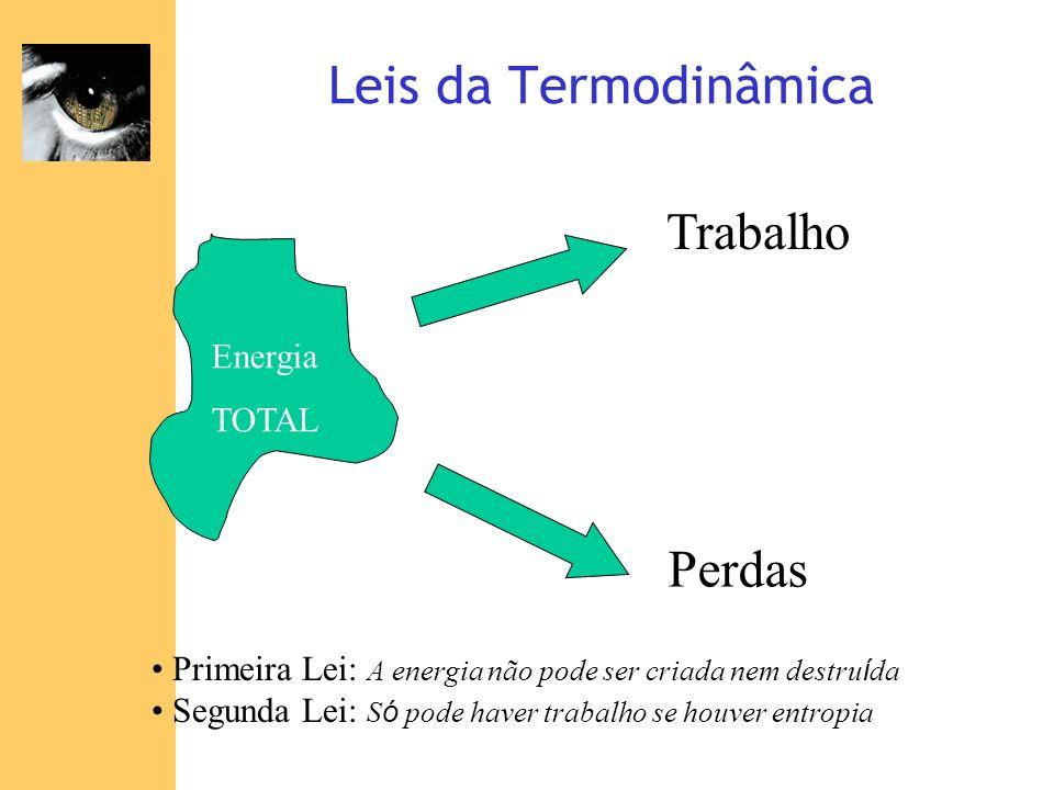 Leis da Termodinâmica Trabalho Perdas Energia TOTAL